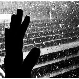 lluvia gotas oloralluvia toementaveraniega