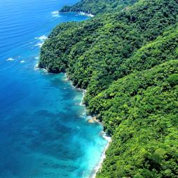 puravida paradise forest photography travel