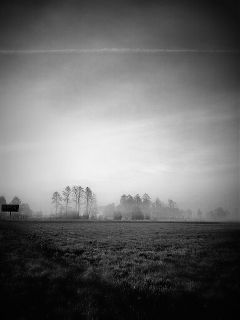 blackandwhite landscape fog sky freetoedit