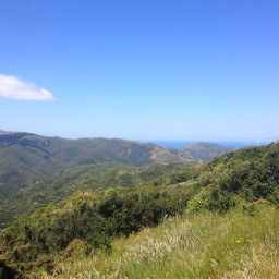 newzealand wellington mountainbike nature