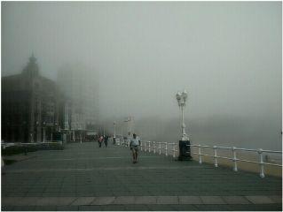 beachphotography cute nature travel foggyday