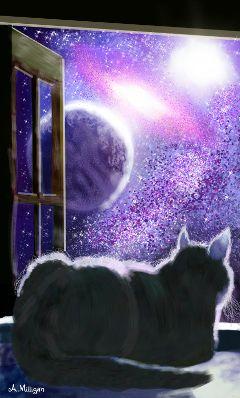wdpgalaxy colorsplash cute cat silhouette