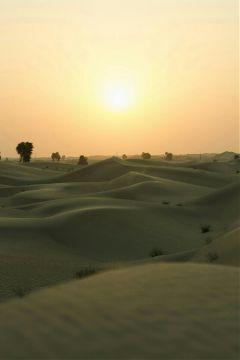 freetoedit love sunset desert sanddunes