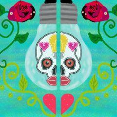 halves drawing skull lightbulb rose wdphalves