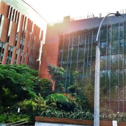 naturallight streetphotography medellin edificio colorconcept